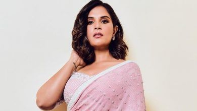 Richa Chadda Biography, Age, Birthday, Wiki, Height, Hot HD Photos, Boyfriend, Income, Upcoming Movies